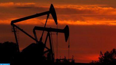 Photo of وكالة الطاقة الدولية تتوقع تراجعا تاريخيا في استثمارات الطاقة العالمية بنحو 20 في المائة